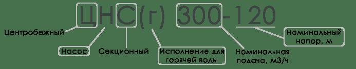 Расшифровка ЦНС и ЦНСг
